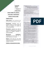 ONDAS SONORAS EN UNA COLUMNA DE AIRE.docx 333.pdf