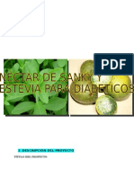 159275631-Nectar-de-Sanky.docx