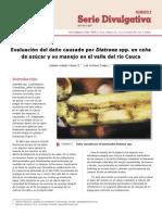 Informe Cenicaña Control Biologico