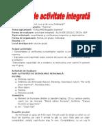 Proiect Inspectie Gradul Iiinspectia Curenta i.doc