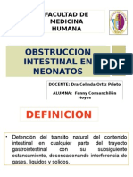 obstruccion intestinal en neonatos.pptx
