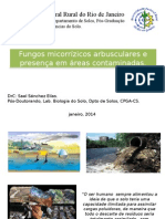 Palestra FMAs e Áreas Contaminadas