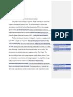 advertisement analysis-2 (1)