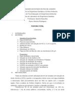 Relatório Fósforo
