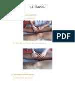 Fiche 08 - Le genou (1).doc
