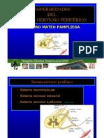 Presentacion Patologias Del SNP- Sm