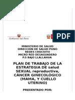 Plan Cacu 2014