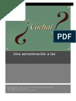 Una aproximacion a las actitudes hacia el voseo chileno