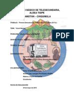 SALUD MENTA1.pdf