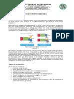 Cogeneración termica USTA