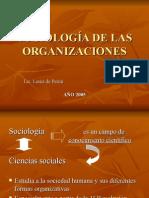 Sociologia de Las Organizaciones (1)