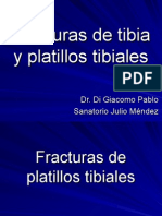 Fx+TIBIAPLATILLOS+uba