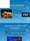Diapositiva Cadena de Custodia