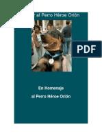 Honor Al Perro Héroe Orión