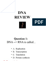Dna Review Ppt