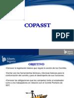 Ccopasst y c.c.l. Ris 2015