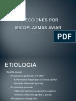 Clase Teórica Infección por Micoplasmas.ppt
