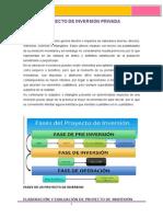 Estructura de Proyecto de Inversion Privada