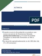 EMBARAZO Y LACTANCIA.pptx