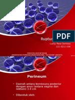 RPS - Ruptur Perineum