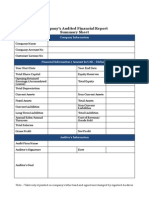 Company s Audited Financial Report Summary Sheet