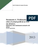 Documento 4 Prob Lematicas Sobre El Perfil de La Sad 2013