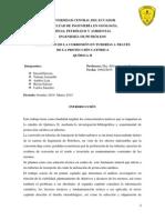 Proyecto Quimica II (Ok)