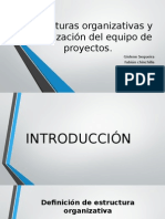 Estructuras Organizativas y Organización Del Equipo de Proyectos