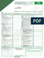 Formulario 210