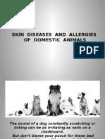 Skin Diseases and Allergies