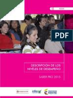 Niveles de Desempeno SABER PRO 2014 Definicion Larga