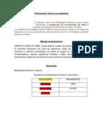 Presentación Minera Los Pelambres Claudio2