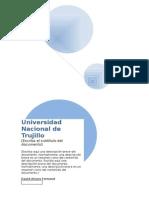 Informe Final - Metodología.docx