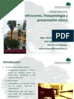 Lesión Medular Definiciones, Fisiopatología y presentación clínica
