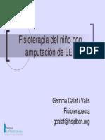 2008_Dra_Calaf.pdf