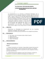 PRACTICA N° 03 - copia.docx