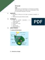 SÍNTESIS DE ALMIDÓN A LA LUZ.docx
