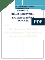 INVESTIGACION LIC ALICIA.docx
