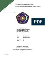 Identifikasi Senyawa Golongan Polifenol dan Tannin