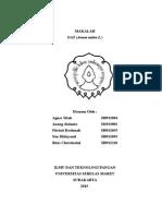 makalah-oat-print-2003-edit.doc