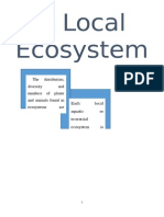 A Local Ecosystem