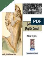 vertebras dorso 2012 II.pdf