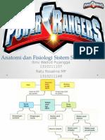 Anatomi Dan Fisiologi Sistem Saraf Tepi