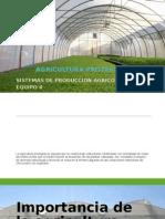 Sistemas de Produccion en Agricultura Protegida