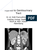Injuries to Genitourinary Tract