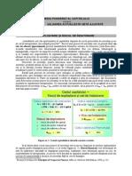 Costul mediu al capitalului vs. VANA