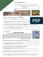 Ficha de Avaliação - Ciências Naturais - 5º ano