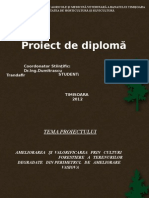 proiect licenta