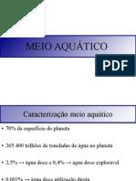 Meio Aquático