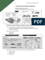 Bromatología. TEMA 2. Alimentos Origen Animal